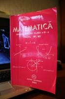 Mircea Ganga - Matematica cls a IX-a M1, M2