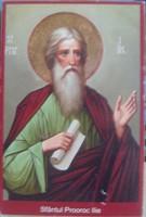 Icoana cu Sf. Ilie