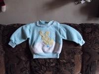 bluzita albastra nou nascuti
