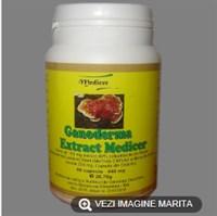 Ganoderma Extract Medicer