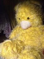 Urs mare galben de plus