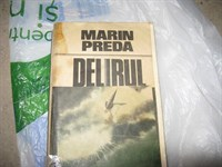 4067. Marin Preda - Delirul