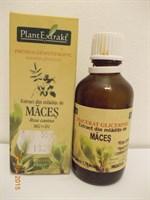 Extract din mladite de maces, produs gemoterapic de la PlantExtrakt, 50 ml