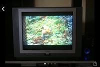 Televizor cu tub plat, diagonala 70 cm